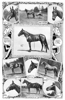 sports/trotter racehorses 1902 notable trotters