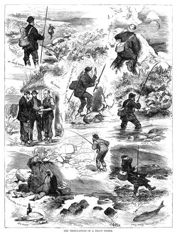 sports/trout fishing 1875 the tribulations trout fisher