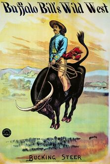 W.F.CODY POSTER, c1885. Bucking Steer: Buffalo Bill Wild West Show lithograph poster
