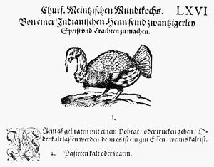 WILD TURKEY, 1604. Woodcut from Max Rumpolt's 'Ein new Kochbuch' published in Frankfurt