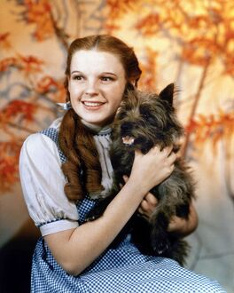 WIZARD OF OZ, 1939. Judy Garland as Dorothy, with her dog Toto, in the 1939 film 'The Wizard of Oz.'