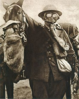 WWI: GAS WARFARE. Both soldiers and horses of the British cavalry utilize gas masks