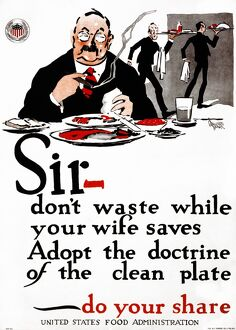 WWI: POSTER, 1917. 'Sir - don't waste while your wife saves - Adopt the doctrine
