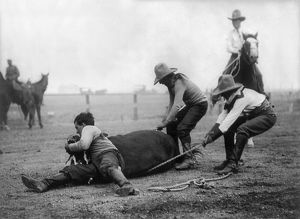 WYOMING: RODEO, c1910. A western performer known as 'Buffalo Vernon' throwing