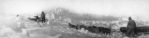 ZIEGLER POLAR EXPEDITION. Dog sled teams of the Ziegler Polar Expedition at the