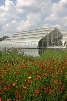 Wisley Glasshouse in Summer
