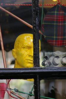 Yellow Head