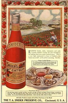 1900s USA tomato sauce catsup sniders oysters tomatoes