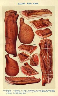 Bacon and Ham 1900s UK Isabella Beeton meat Mrs BeetonA•s Book of Household Management