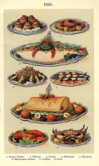 fish 1900s uk isabella beeton mrs beetons