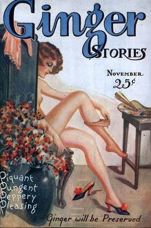 Ginger Stories 1927 1920s USA erotica pulp fiction magazines menA•s