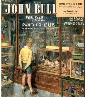 John Bull 1948 1940s UK dogs pet shops pets magazines