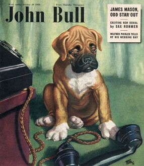 John Bull 1949 1940s UK dogs magazines