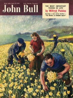 John Bull 1950 1950s UK picking harvesting flowers magazines horticulture