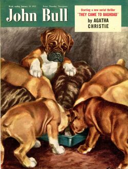 John Bull 1951 1950s UK dogs magazines