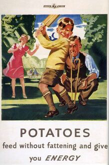 Ministry of Food 1940s UK potatoes cricket families
