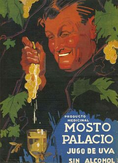 Mosto Palacio 1934/35 1930s Spain wine alcohol grapes fruit cc
