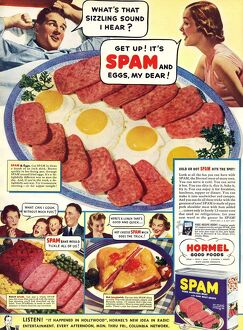 Spam 1960s USA Hormel meat tinned disgusting food breakfasts meals meals canned cans