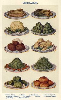 Vegetables 1900s UK Isabella Beeton Mrs BeetonA•s Book of Household Management cooking
