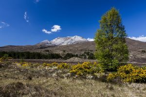 Beinn Eighe in Torridon, Scotland.