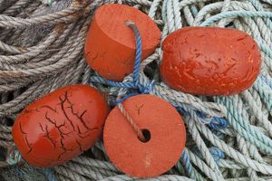 Fishing floats and fishing rope in Orkney, Scotland.