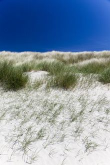 Sand dunes at Cliad Bay, Coll, Scotland.