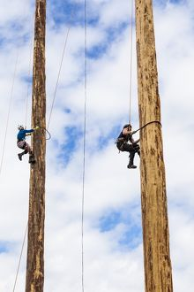 A tree trunk climbing competition.
