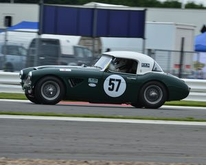 CJ3 6383 David Smithies, Austin Healey 3000