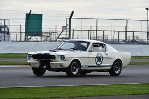 CM1 3639 Jeremy Cooke, Michael Dowd, Ford Mustang, Shelby Mustang GT350