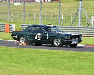 motorsport archive galleries/motorsport 2016 hscc legends brands hatch super prix july 2016/cm14 7726 ross hyett ford mustang