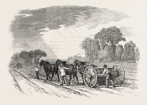 AGRICULTURAL PICTURES: DRILLING AND HARROWING, 1846