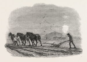 AGRICULTURAL PICTURES: PLOUGHING, 1846