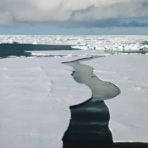 Antarctica, Ross Sea, Ice floes on sea