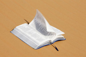 Bible on desert sand