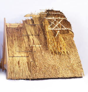 Building a thatched roof, model
