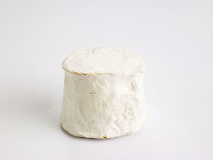 Chabis, French goats milk cheese from the Loire Poitou area