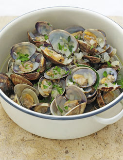 Clams in white wine sauce in pan, close-up