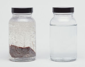 Clear jar of liver in liquid.