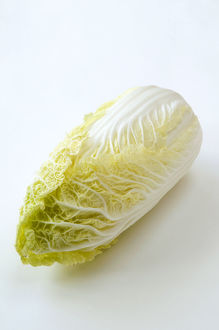 Close-up of chinese cabbage