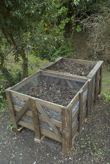 Two compost bins made from untreated lumber and chicken wire