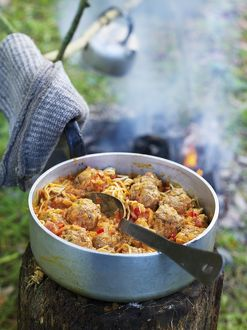 Cooked meatballs and pasta sauce in aluminium pan on top of tree stump near camp fire