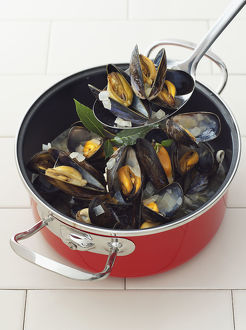 Cooked mussels in pan and spoon, close-up