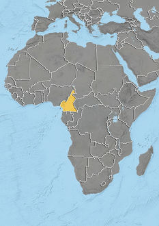 Cameroon, Relief Map