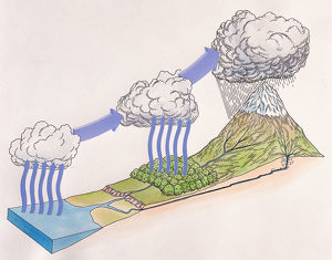 Diagram showing water cycle of rain and snow; evaporating sea water forming cloud