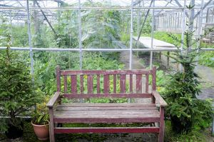 England, Lancashire, Wooden bench by greenhouse