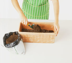 Filling a clay window box with soil.