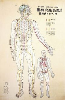 Focal points of the human body, front view, watercolor