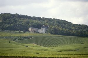 France, Champagne, vineyards surrounding chateau
