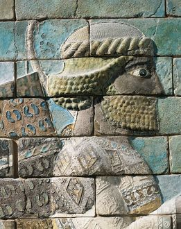 Detail of frieze of Archers of polychrome glazed brick, from Palace of Darius I, from Shush (ancient Susa), Iran
