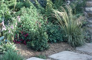 A garden showing the use of gravel to control weeds.